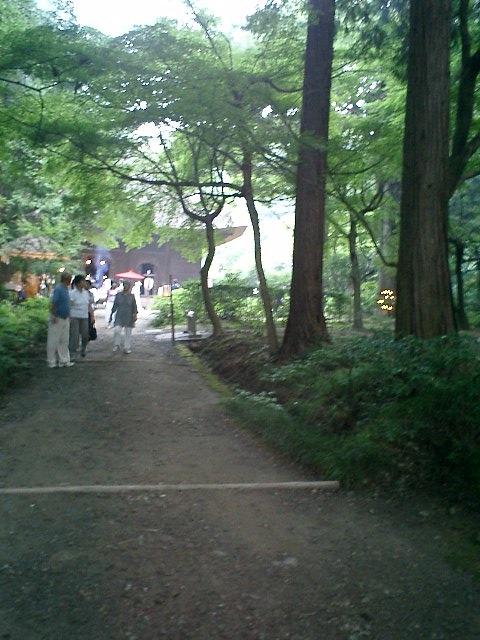 3-02)鎌倉市二階堂「覚園寺」境内から本堂を望む。.JPG